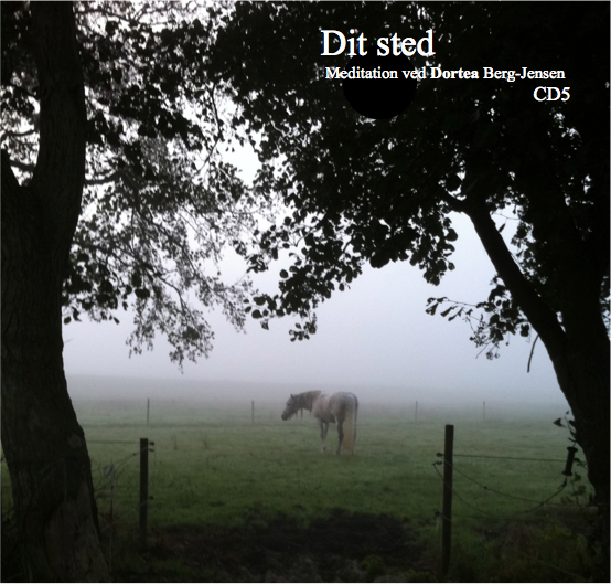 """CD5 """"Dit sted"""""""